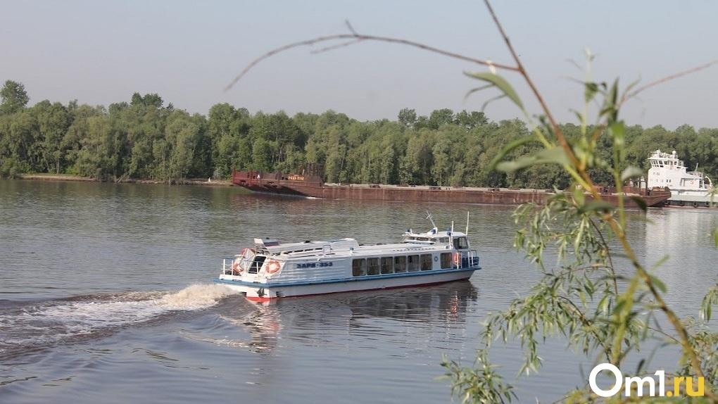 Новосибирскую Обь признали одной из самых грязных рек России