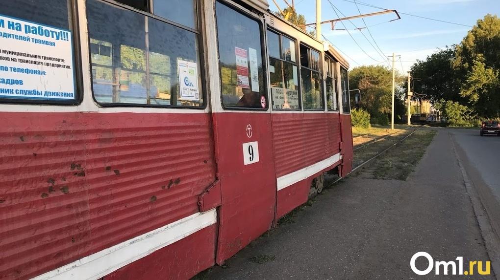 Аналитики рассказали, какой любимый вид общественного транспорта у омичей