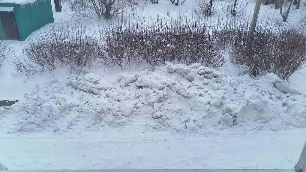 Затопило фекалиями и завалило снегом: две беды пришли в дом жителей Барабинска Новосибирской области