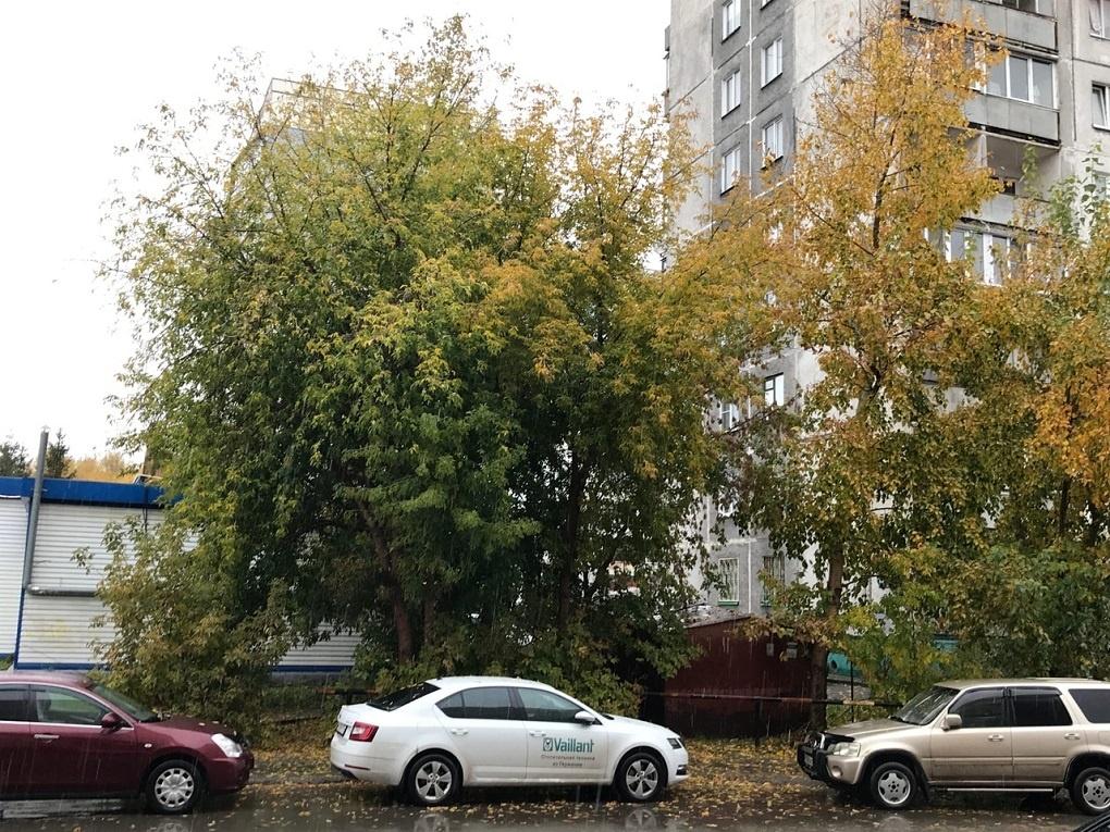Новосибирск ушёл под воду после дождя