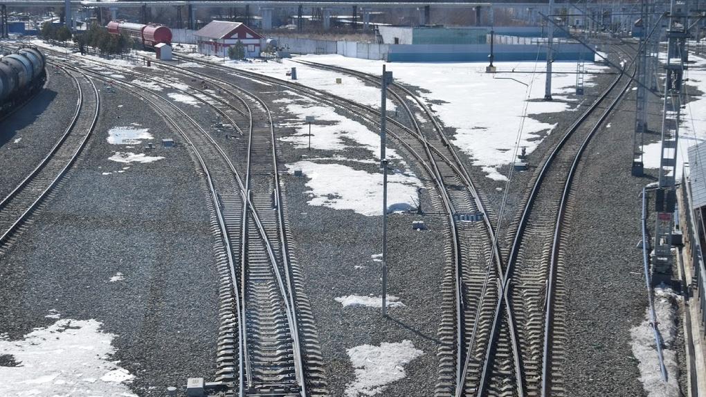 В Омской области под колёсами поезда погибли два ребёнка
