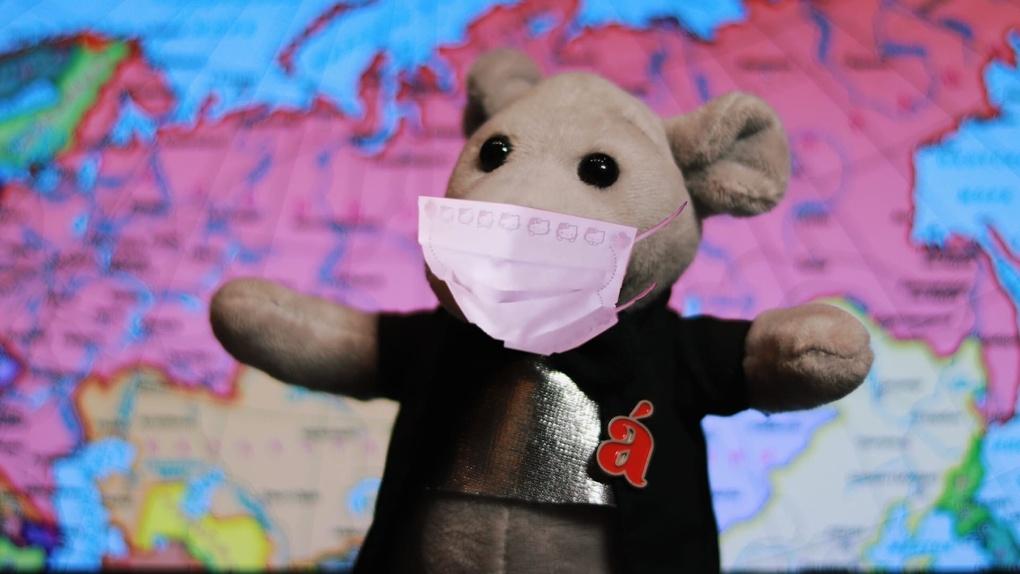 В 81 стране мира отменили акцию «Тотальный диктант» из-за коронавируса