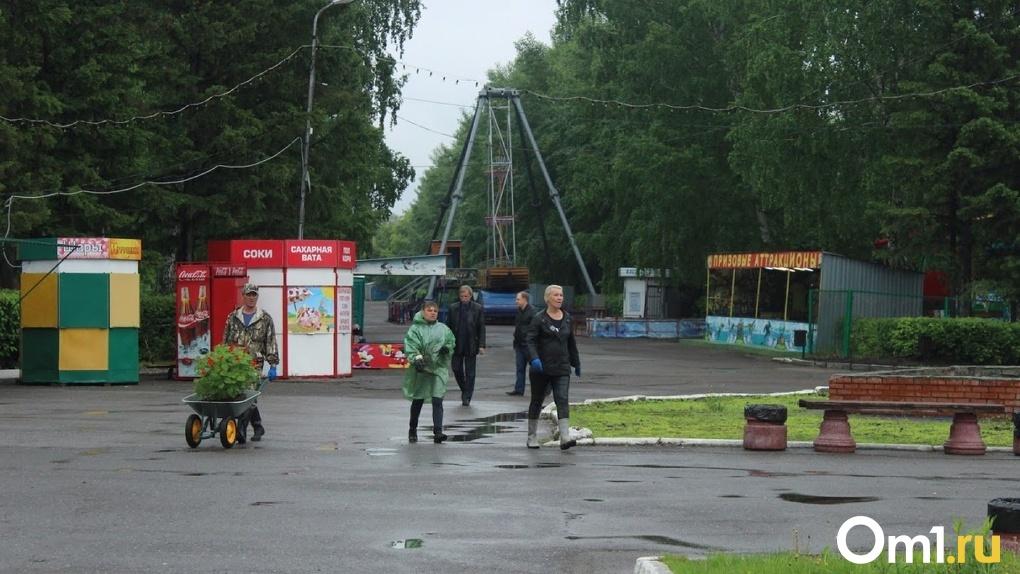 Омские депутаты были возмущены вырубкой деревьев в Советском парке