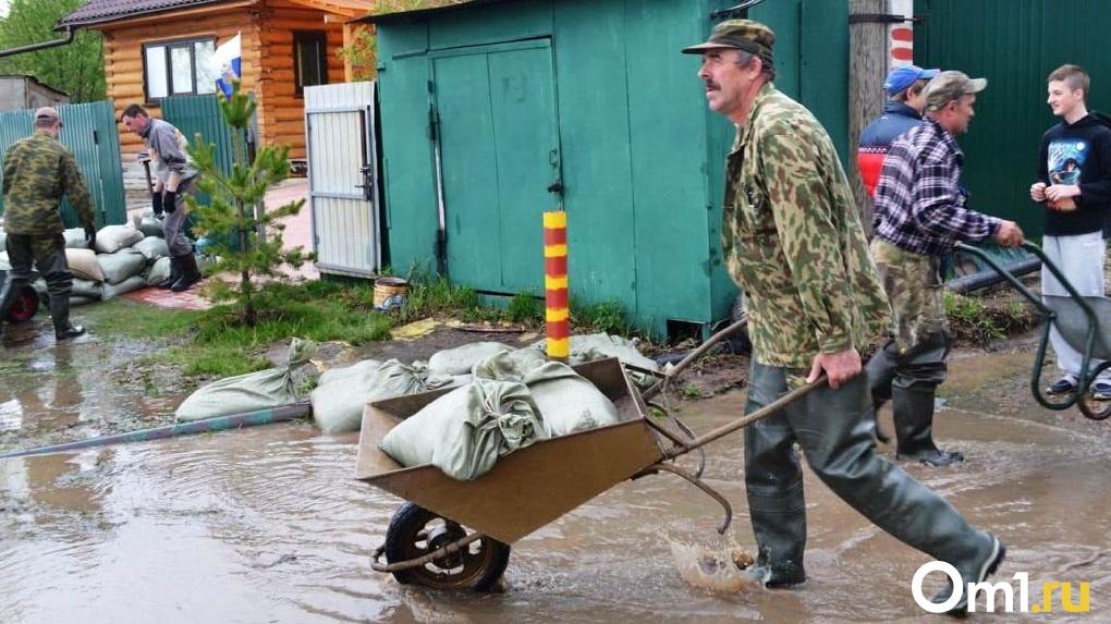 На краю пропасти: пять тысяч новосибирских дачников пытаются спасти дома от мощного затопления
