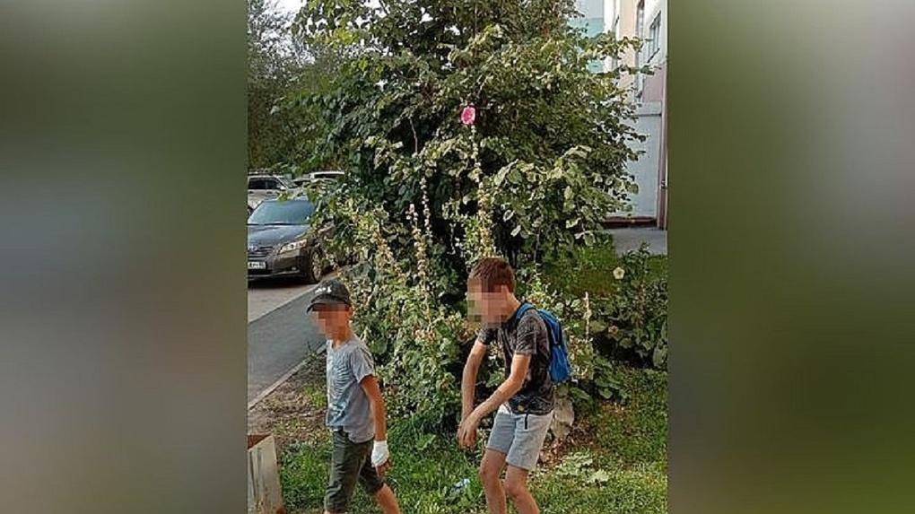 «Мы так развлекаемся»: шайка детей терроризирует жителей новосибирского МЖК