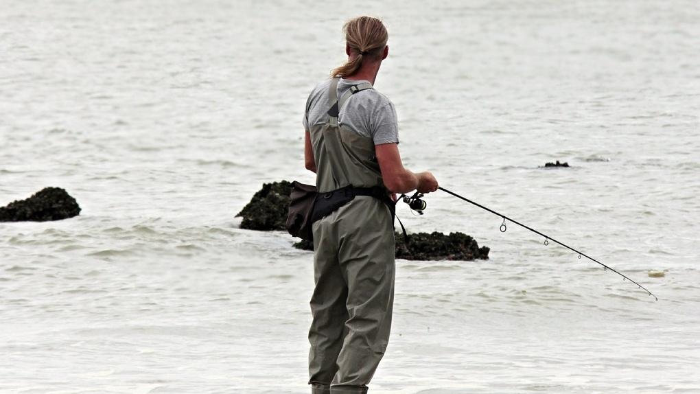 Радость для рыбаков: белого амура и толстолобика выпустили в водоёмы Новосибирской области