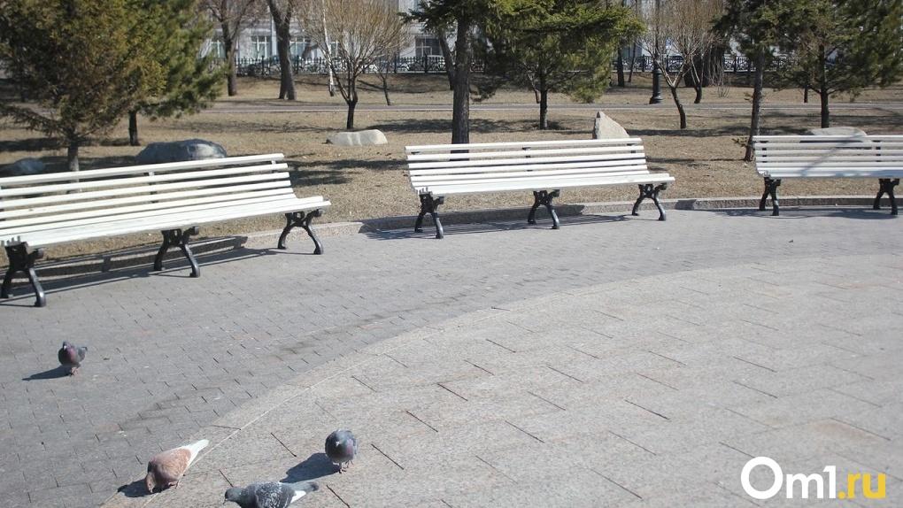 Официально: в Омске до 19 апреля продлен режим самоизоляции (обновляется)