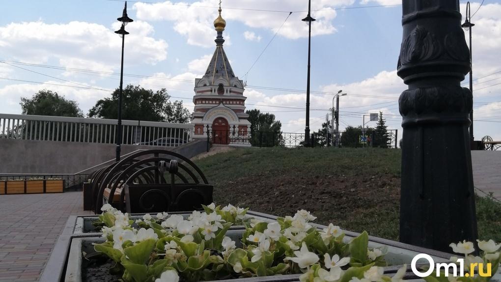 На улицах Омска высадили почти полмиллиона цветов