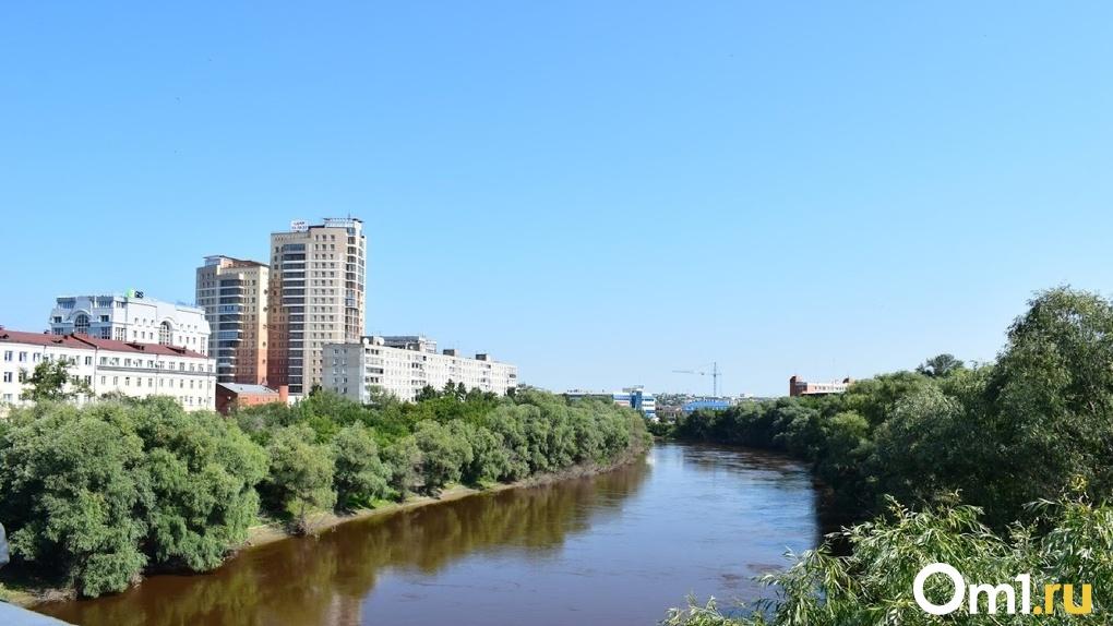В Омске построят новый мост за 12 миллиардов рублей, соединяющий Московку и Амурский посёлок