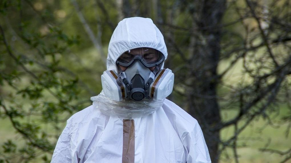 Маски снимать нельзя: Омск на несколько часов станет самым пыльным городом мира