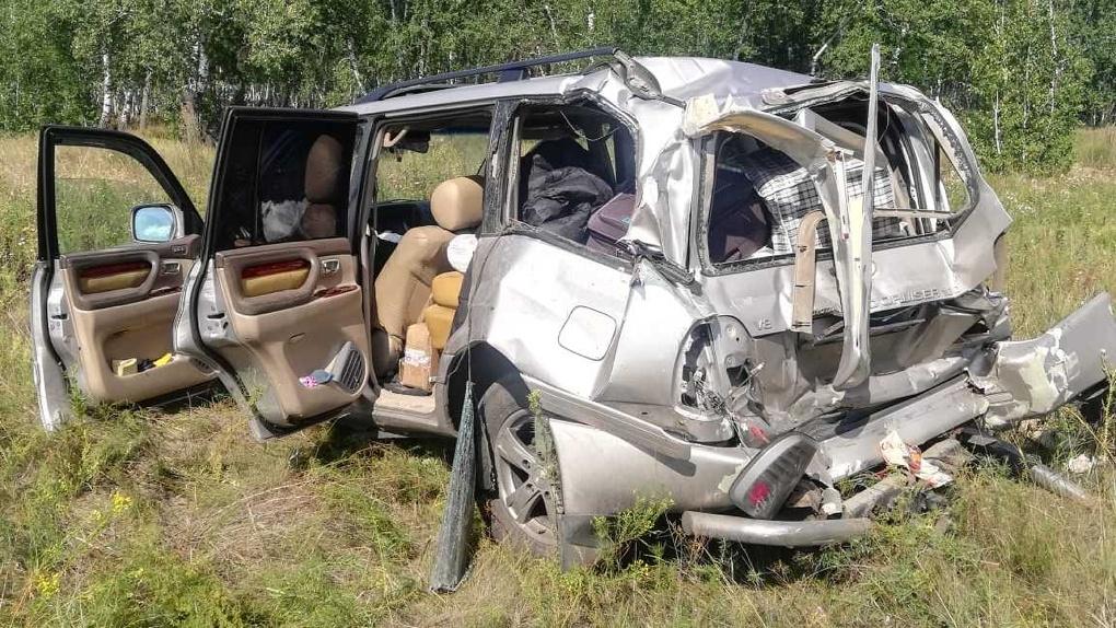 Выскочил в разбитое окно и убежал в лес. В Омской области ищут пса, попавшего в ДТП