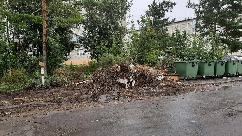 Замотанный в старый ковёр труп женщины нашли у мусорных баков в Новосибирской области