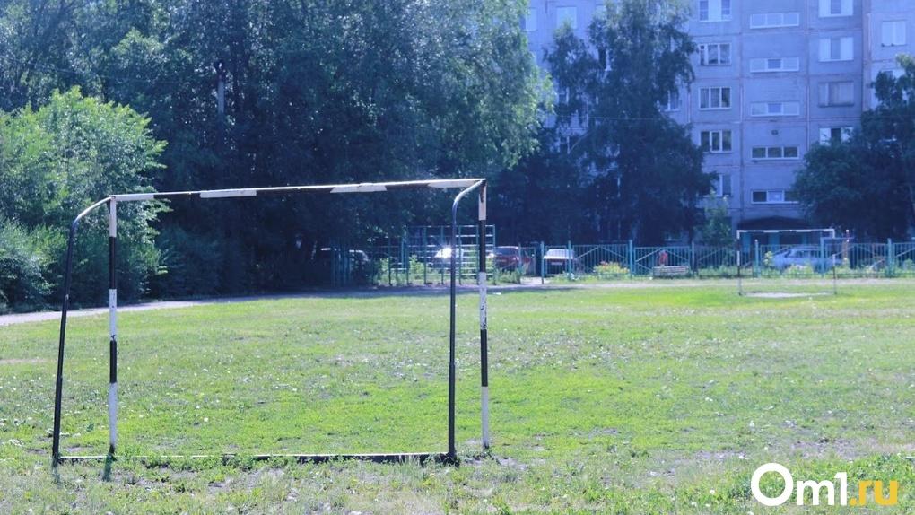 Ушибы и растяжения. Во дворе омской школы на 6-летних детей упали хоккейные ворота