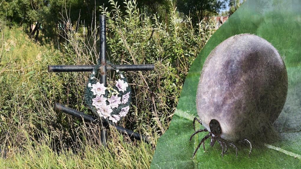На кладбища, недоступные для омичей, теперь не пустят ещё и клещей