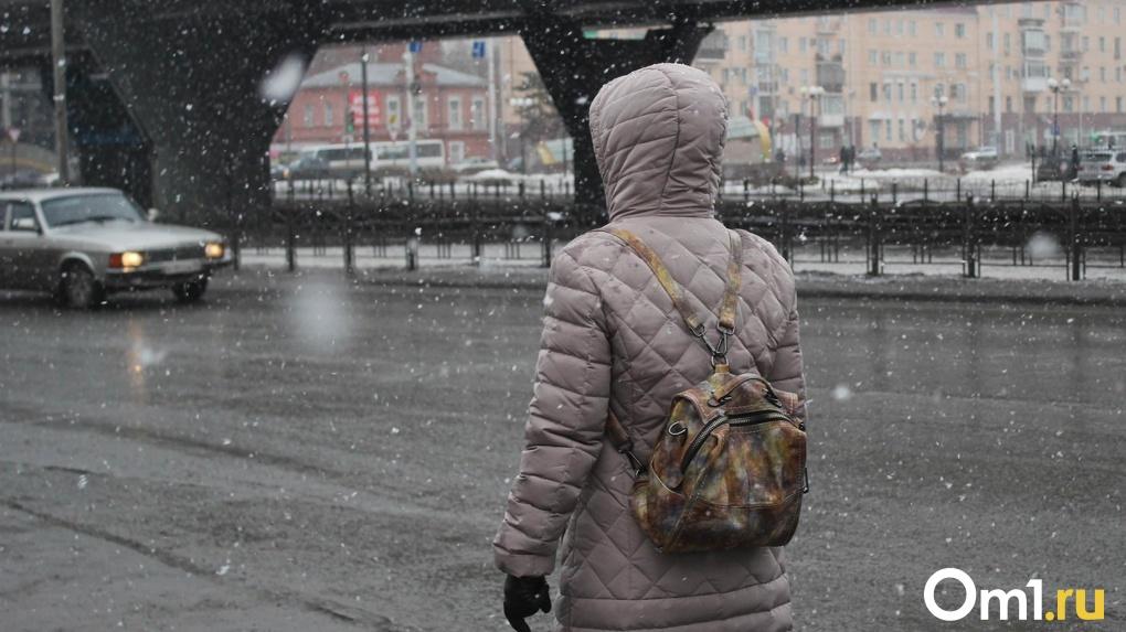 На Новосибирск обрушится метель
