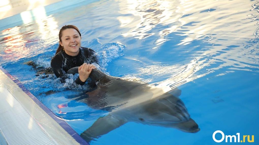 Новосибирский дельфинарий снимают с карантина
