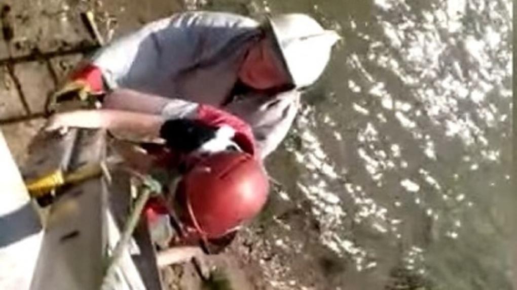 На новосибирской набережной течением снесло 12-летнюю девочку