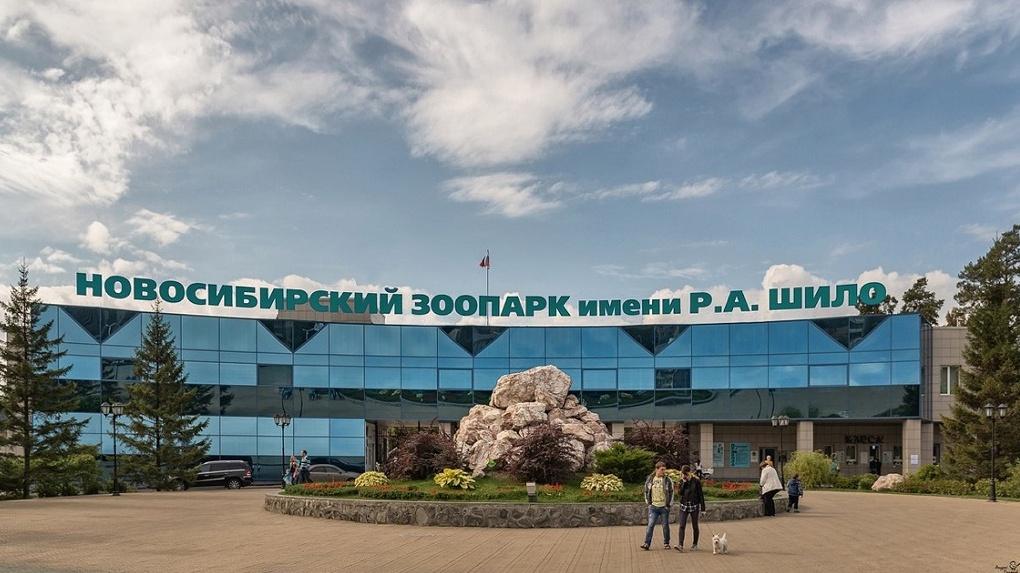 В Новосибирском зоопарке официально объявили о закрытии на период карантина