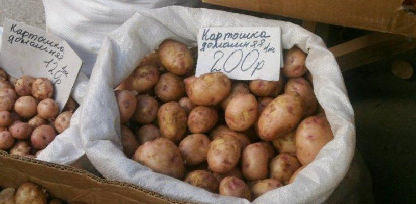 «Картофельная инфляция» не затронет Омскую область