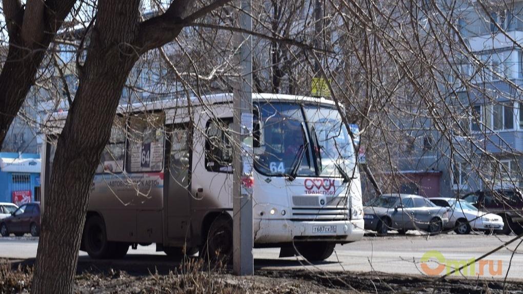 В Омске из-за разбитых дорог отменили автобусы до дачных поселков