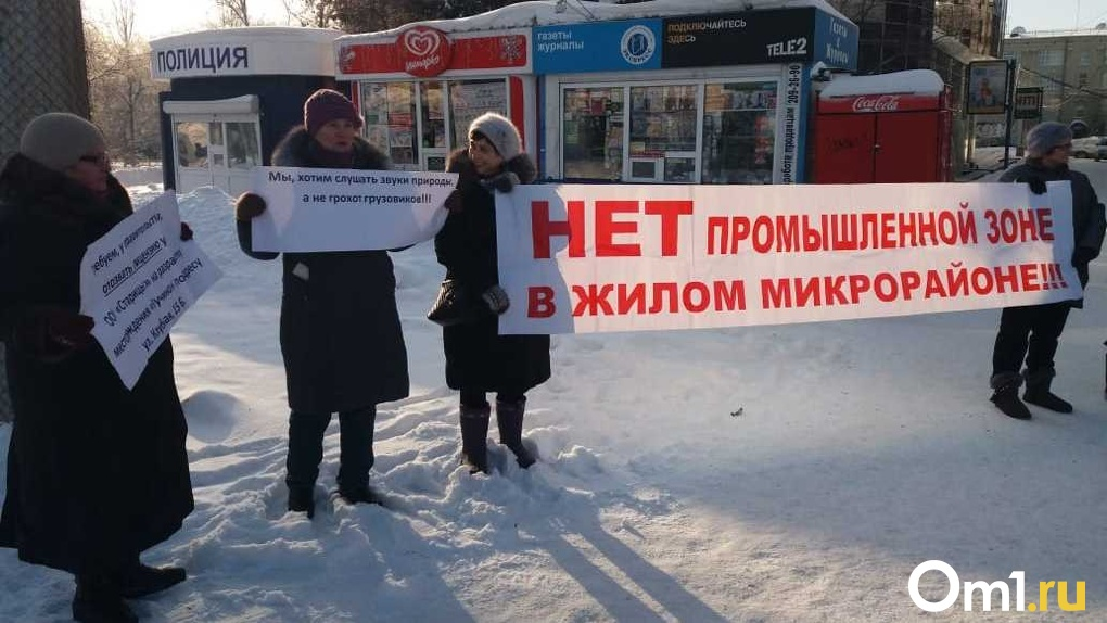 Защитники Кучинского болота вышли на пикет в центр Новосибирска