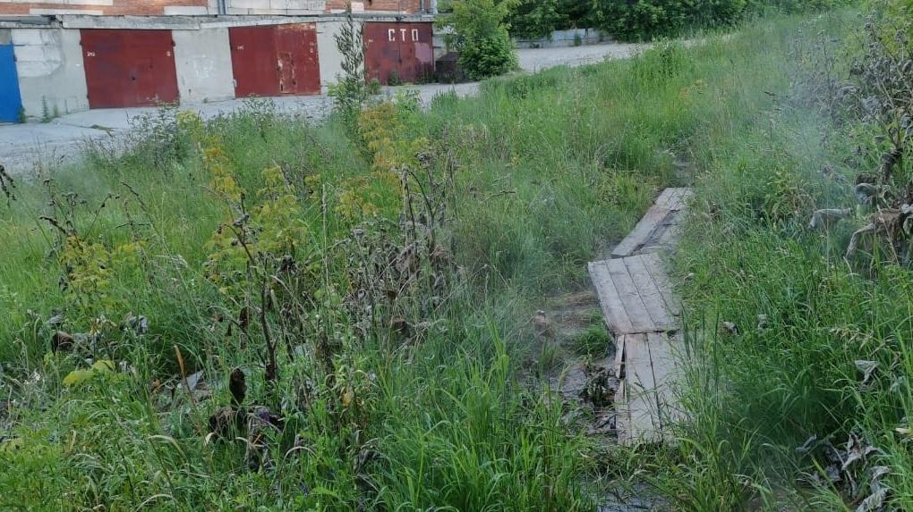 В Октябрьском районе Новосибирска кипяток залил пустырь