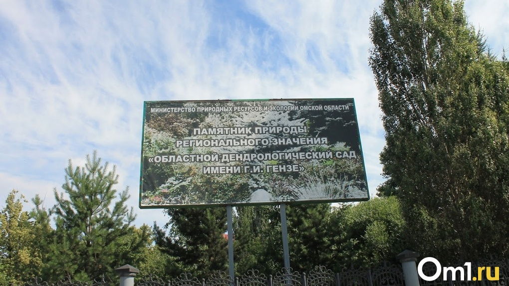 Омичей не пустили на общественные слушания по преобразованию дендросада – на входе дежурила полиция