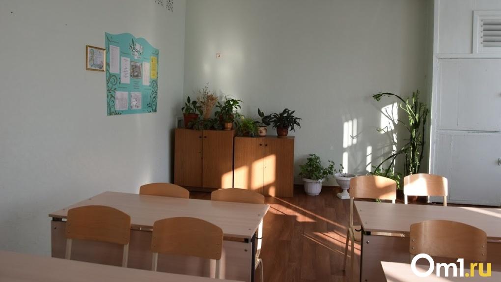 Министерство просвещения РФ рекомендовало Омской области готовить школы к дистанционной учёбе