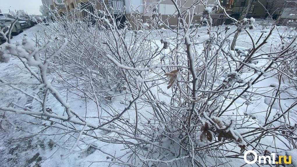 До -30 градусов. В Омской области ожидаются резкие перепады температур