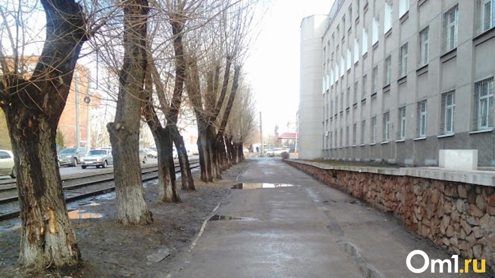 В Омске два месяца будут перекрывать улицу Лермонтова по ночам
