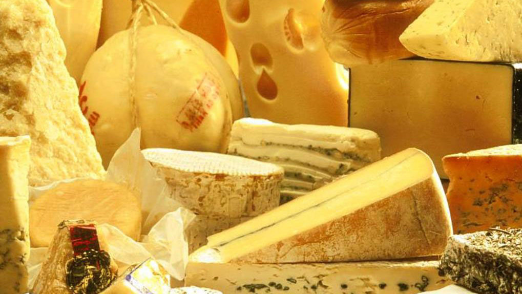 На омском маслосыркомбинате делали фальсификационный сыр