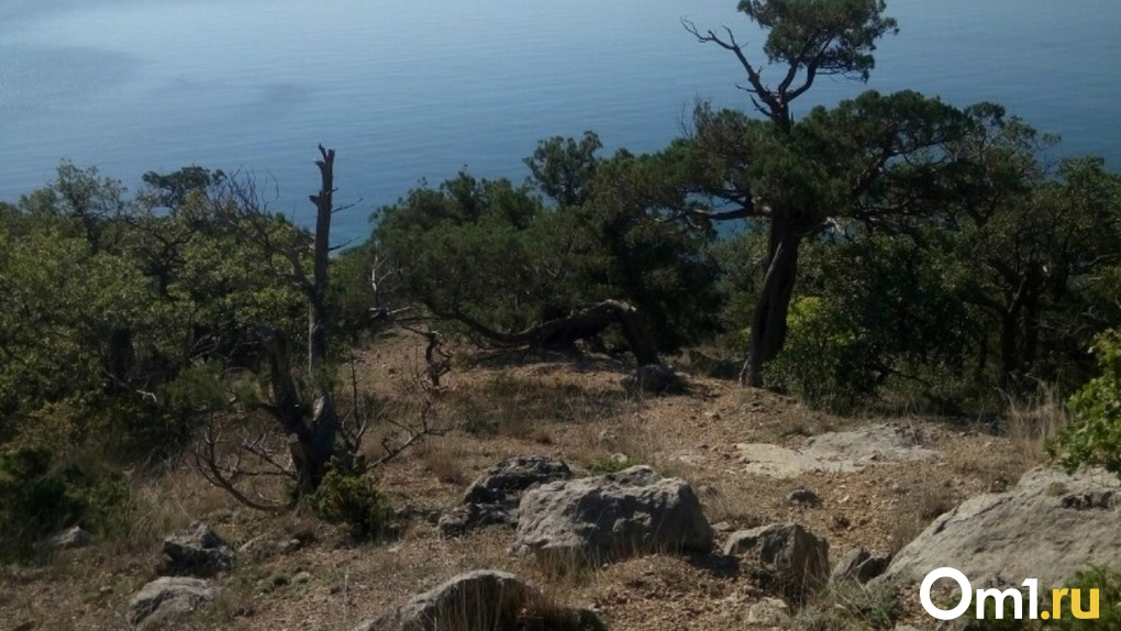 Омич привёз подругу в Крым, убил её у подножия горы и скинул в обрыв у Долины привидений