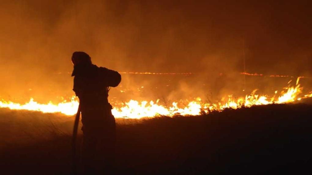 Из-за теплой погоды в Омской области вновь начали гореть леса