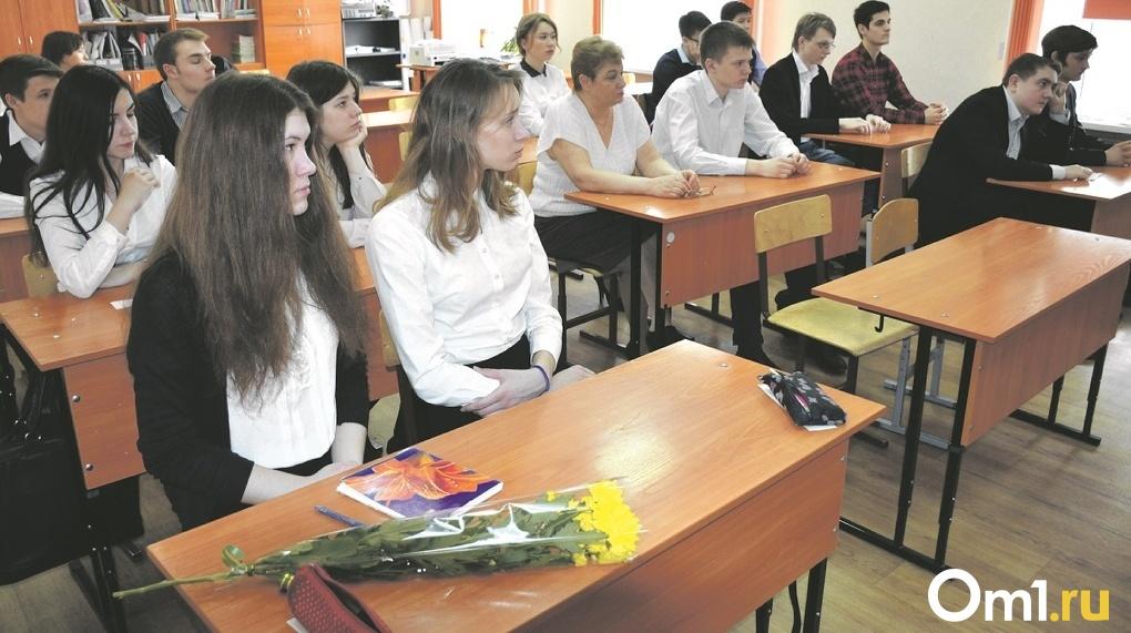 Новосибирские школьники начнут изучать культурологию