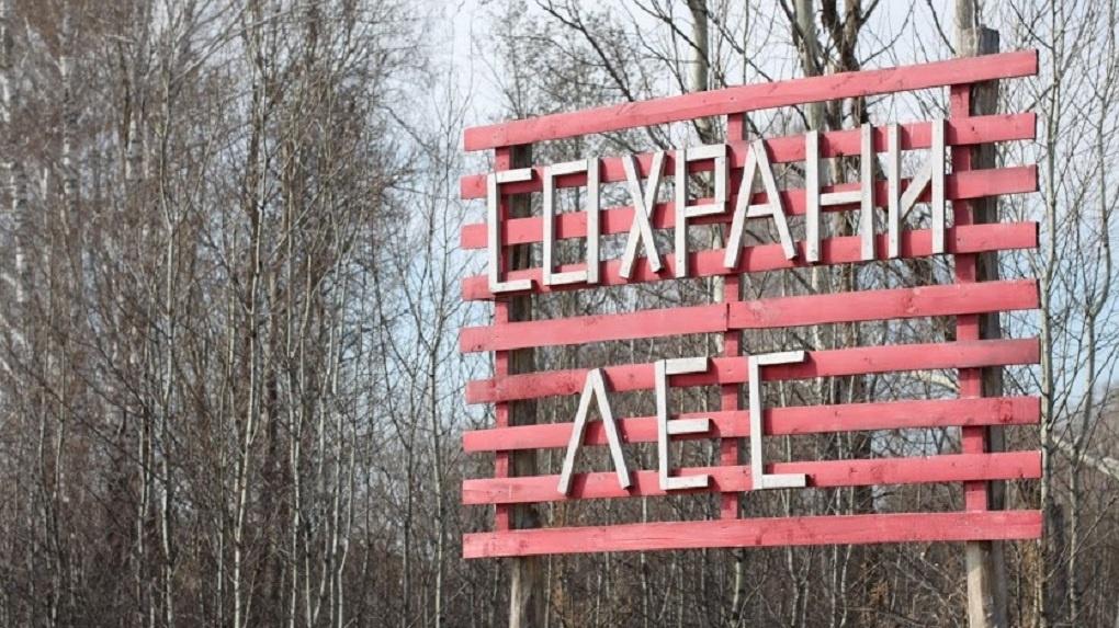 В Омской области горят леса. Запах доходит и до столицы региона (ФОТО)