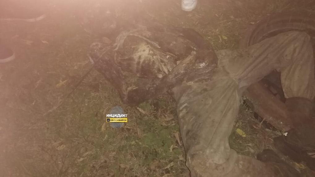 Шокирующее фото: в новосибирском коллекторе обнаружили разложившийся до костей труп мужчины