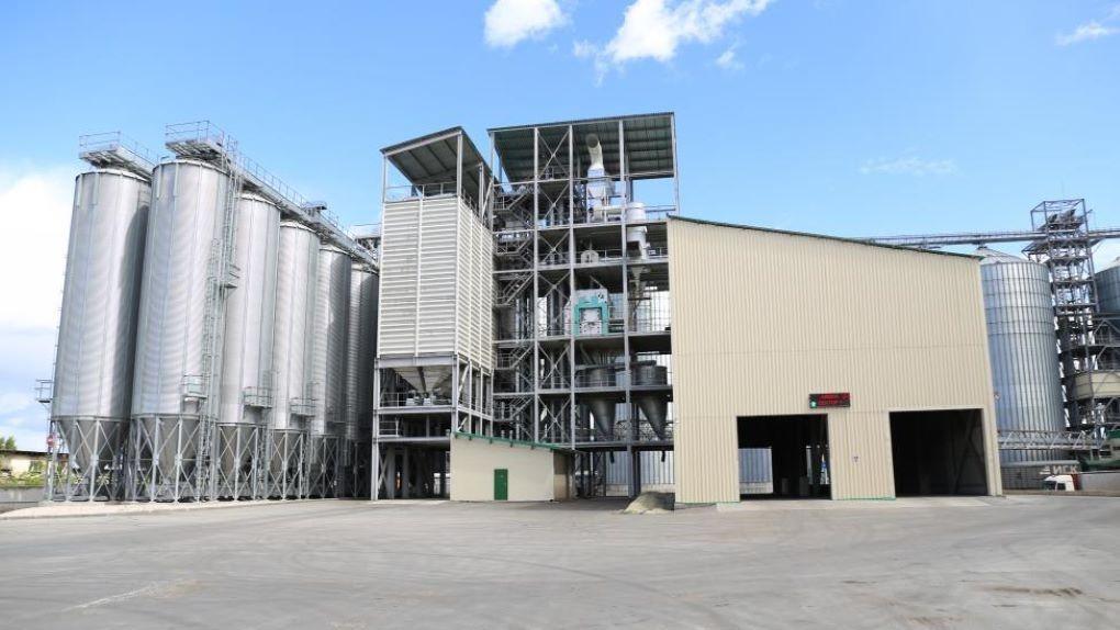 Власти поддержат производство минеральных кормов в Новосибирской области