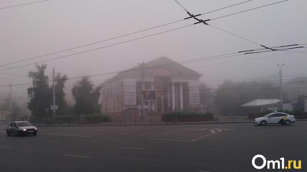 На этой неделе в Омске сохранится жаркая погода и придут туманы
