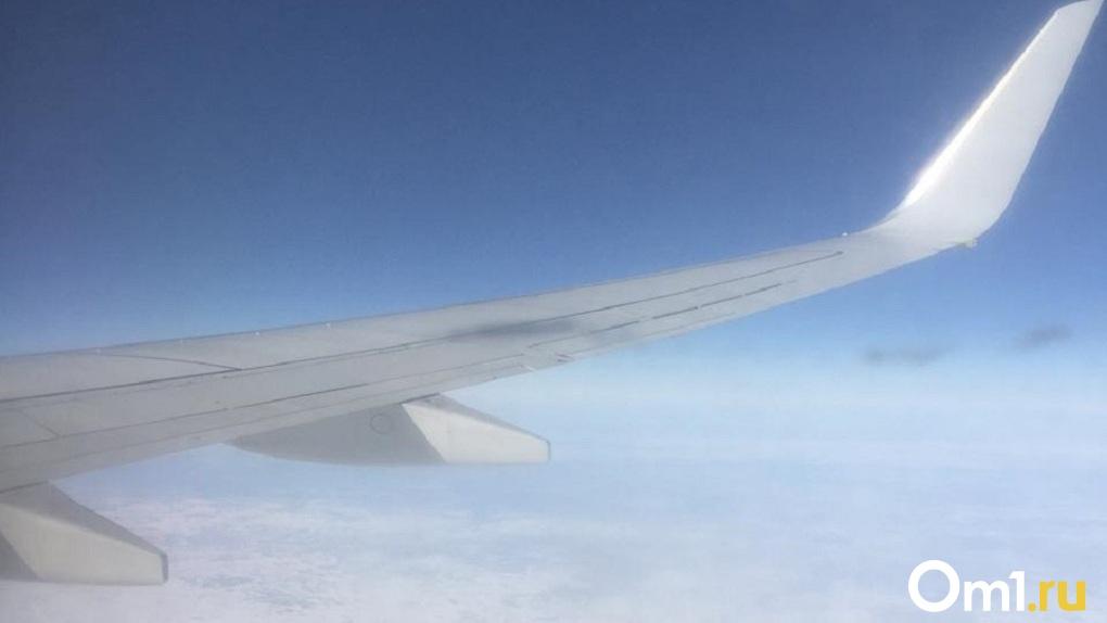 Самолёт из Москвы совершил аварийную посадку в Новосибирске
