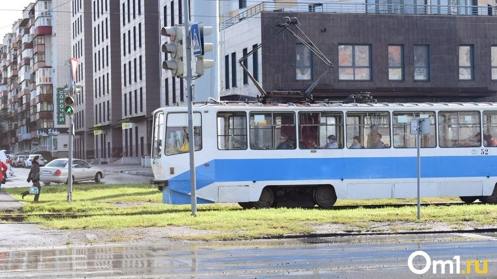 Новосибирск остался без федеральных денег на закупку нового электротранспорта
