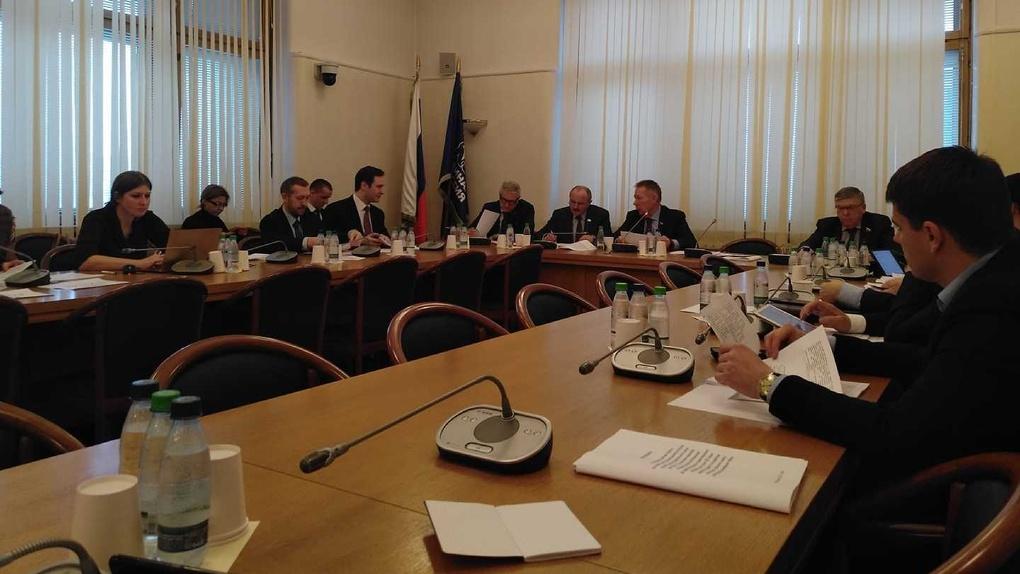 Продавцы снюсов мешают запрету никотиновых смесей, заявила новосибирский депутат