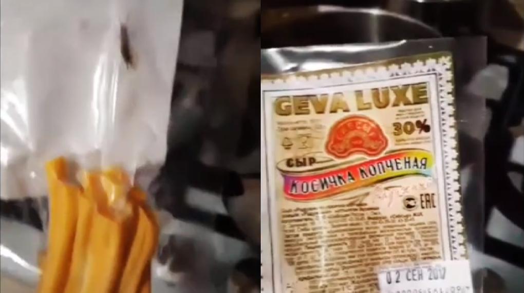 В Омске в сыре косичка нашли живую двухвостку