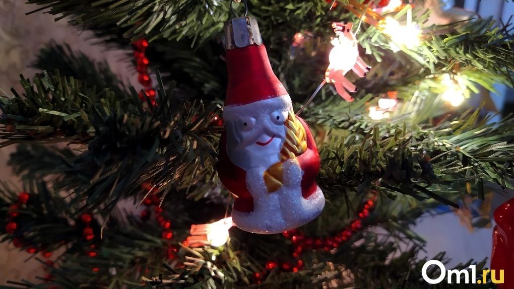 «Это же надо так деградировать!». Пьяные омичи украли из подъезда новогоднюю ёлку