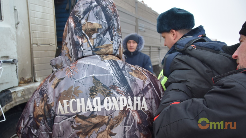 Чиновники исключают коррупцию при контроле перевозки древесины в Омской области