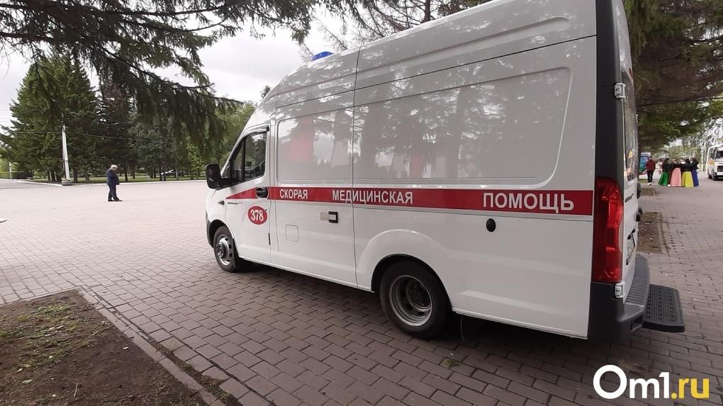В Омской области водитель КамАЗа сбил двух школьников