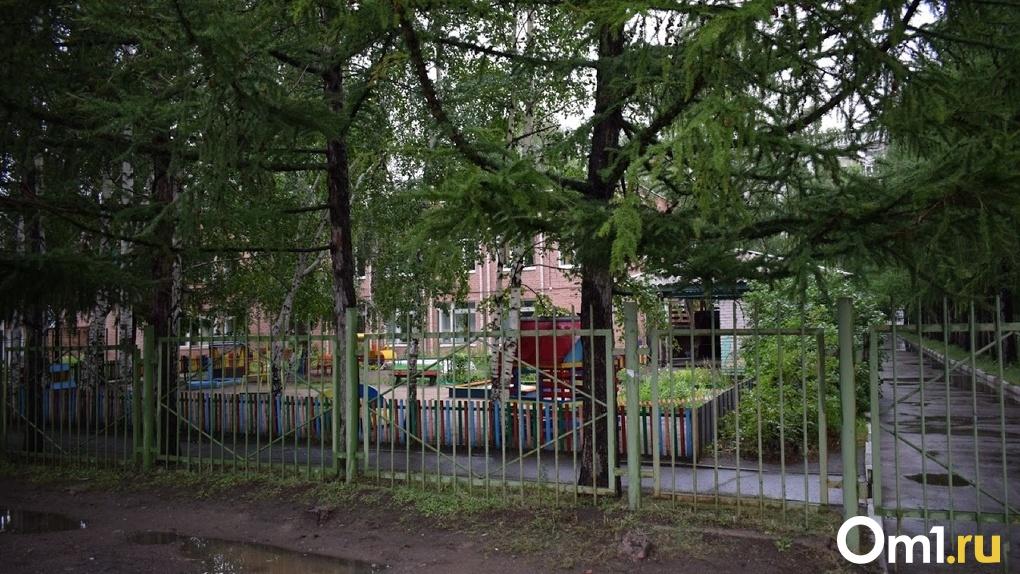В детском саду Омска аварийные деревья угрожали жизни детей