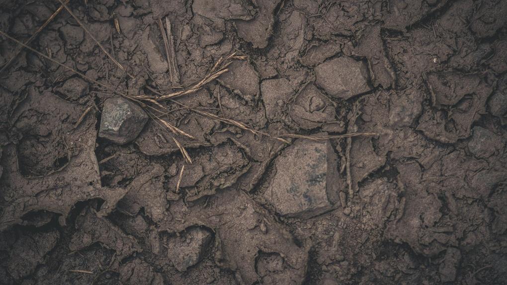 Эксперты выясняют причины схода грязевого селя в Новосибирской области