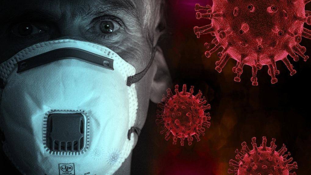 Попова заявила, что в России скоро станет больше смертей от коронавируса