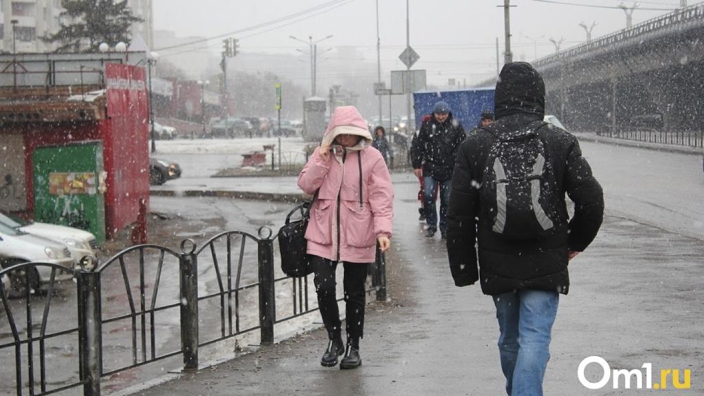 Экстремальное похолодание. В Омске обещают до -14 градусов и снег
