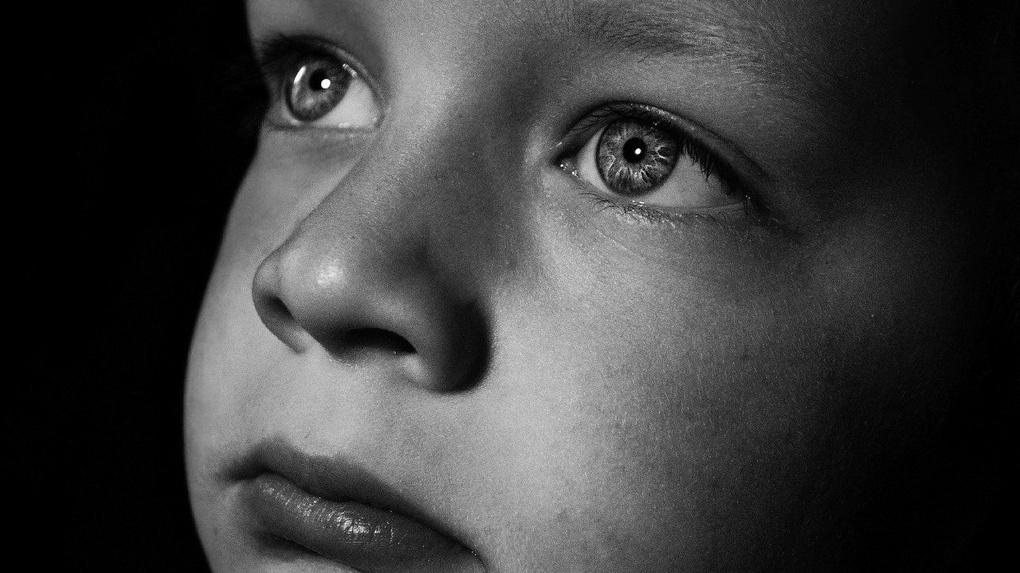 Под Новосибирском у женщины украли двухлетнего сына во время прогулки